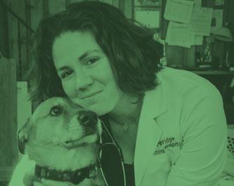 Dr. Beth Mehaffey
